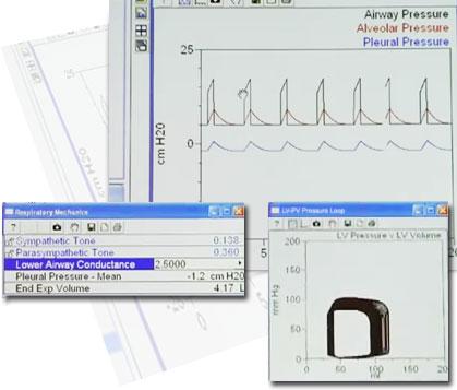 cardiovascular physiology physioex 34b
